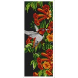 Colibri - aida noire 25/60 - 64