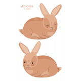 Coussin Antonin le lapin - 64