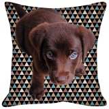 Coussin chiots - 64