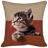 Coussin chatons - 64
