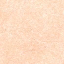 Feutrine Cinnamon Patch x 5u 30/45cm rose poudre - 105
