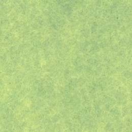 Feutrine Cinnamon Patch x 5u 30/45cm pistache - 105