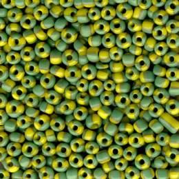Perle bicolore 10/0 -500grs- - 162