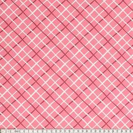 Tissu Mez Fabrics coton tutti frutti check pink - 22