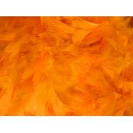Boa moyen plumes déchirées 1,90m orange fluo - 319