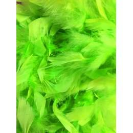 Boa moyen plumes déchirées 1,90m vert fluo - 319