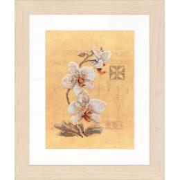 Kit pt compté 3 orchidées / fond imprimé - 4