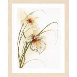 Kit au point compté orchidée - 4