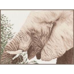Kit au point compté elephant mangeant - 4