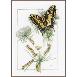 Kit au point compté de la chenille au papillon  - 4