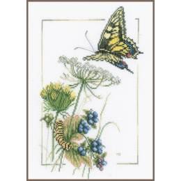 Kit au point compté papillon et baies bleu  - 4