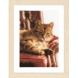 Kit au point compté chat paresseux  - 4