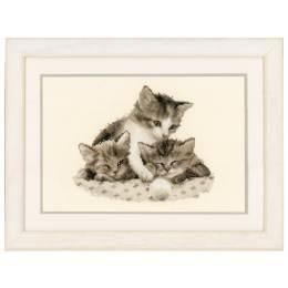 Kit au point compté trois petits chatons aida - 4