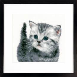 Kit au point compté chaton gris  - 4