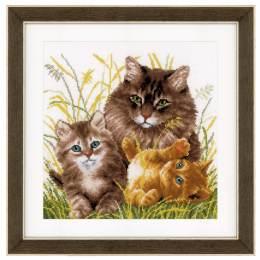 Kit au point compté famille de chats aida - 4