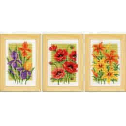 Kit miniature fleurs d'été lot de 3 - 4