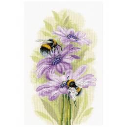 Kit point compté dancing bees - 4