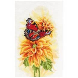 Kit point compté fluttering butterfly - 4