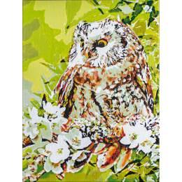 Kit peinture par numéro hibou & lutin - 4