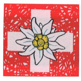 Thermocollant edelweiss 5,5 x 5,5 cm - 408