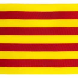 Ruban catalan 100mm - 458