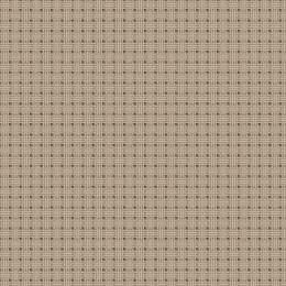 Coupon 50/80 cm. aïda de lin 5.5 - 47