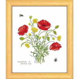 Coquelicots et boutons d'or - 47