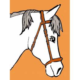 Kit canevas blanc 25/20 cheval - 47