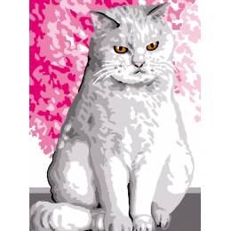 Kit canevas blanc 20/25cm Chat blanc - 47