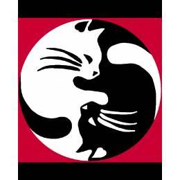 Kit canevas blanc 20/25cm Les chats - 47
