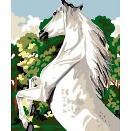 Kit canevas blanc 25/30cm cheval blanc - 47