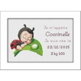 Kit pt compte de naissance aida coccinelle - 47