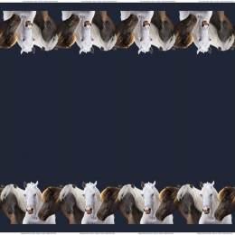 Tissu Stenzo jersey digital print border - 474