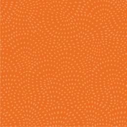 Tissu Dashwood twist pumpkin - 476