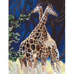 Girafes au grand coeur - 55