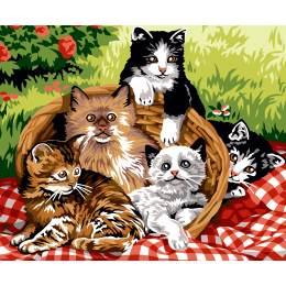 La paniere de chats - 55