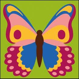 Kit enfant 20/20 papillon - 55