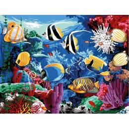Aquarium - 55