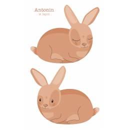 Coussin Antonin le lapin - 64