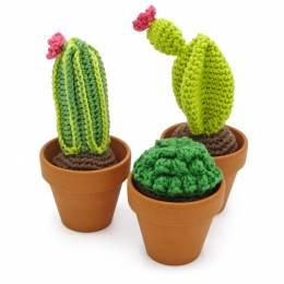 Kit crochet HardiCraft - cactus - 81
